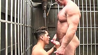 Horse hung muscle daddy destroys a tight young hole